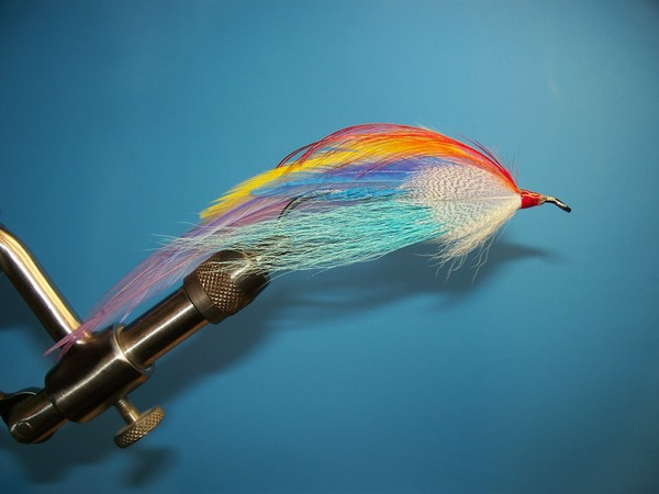 Rainbow Runner.jpg