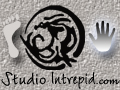 Studio Intrepid